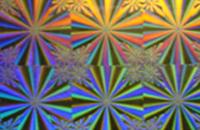pattern-01_23